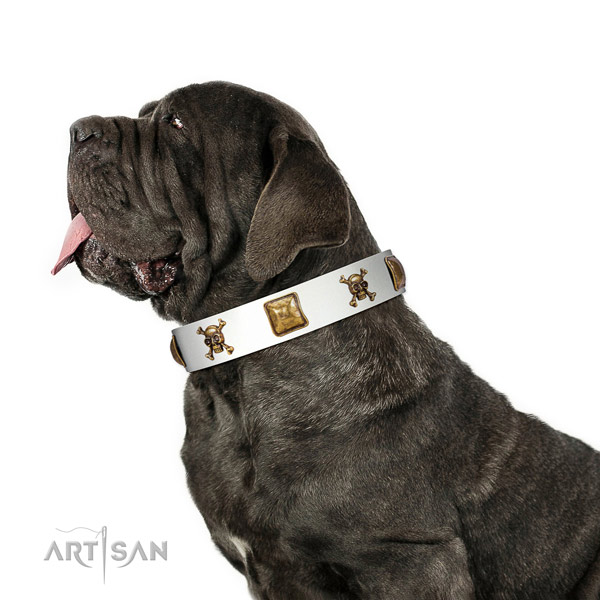Fashionable genuine leather dog collar with corrosion resistant embellishments