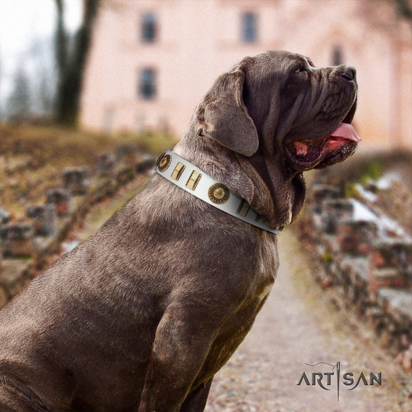 Mastino Neapoletano exquisite embellished leather dog collar for comfy wearing