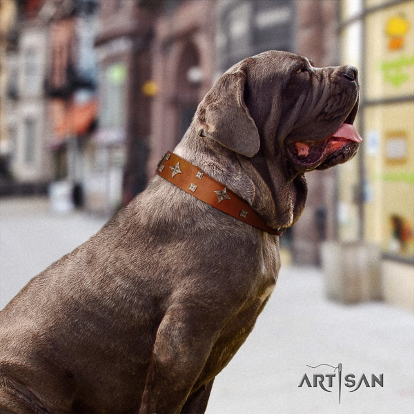 Mastino Neapoletano incredible embellished full grain natural leather dog collar for walking