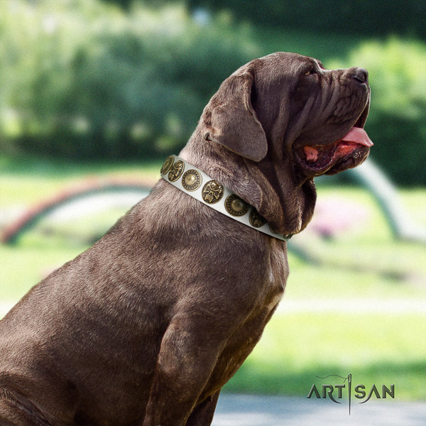 Mastino Neapoletano exceptional decorated genuine leather dog collar for comfortable wearing