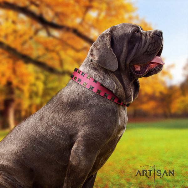 Mastino Neapoletano stylish design decorated full grain natural leather dog collar for comfy wearing