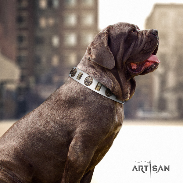 Mastino Neapoletano exquisite adorned full grain genuine leather dog collar for everyday walking