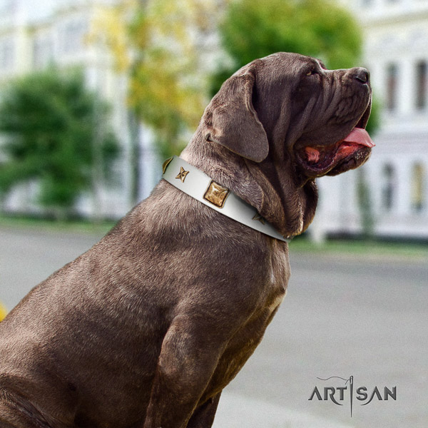 Mastino Neapoletano exquisite decorated natural leather dog collar for daily walking