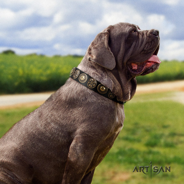 Mastino Neapoletano exquisite decorated genuine leather dog collar for comfortable wearing
