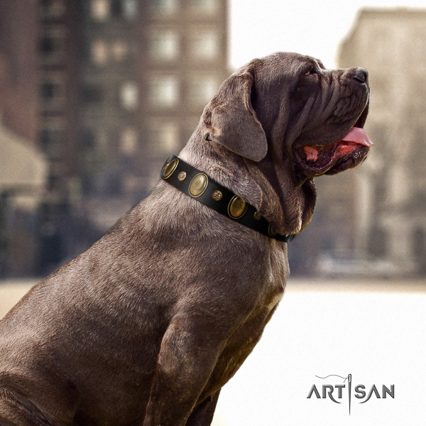 Mastino Neapoletano impressive adorned full grain natural leather dog collar for fancy walking