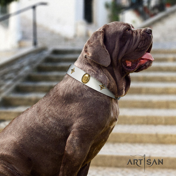 Mastino Neapoletano amazing decorated full grain genuine leather dog collar for comfortable wearing