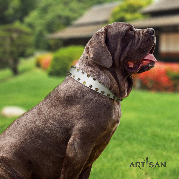 Mastino Neapoletano fashionable embellished full grain natural leather dog collar for comfy wearing