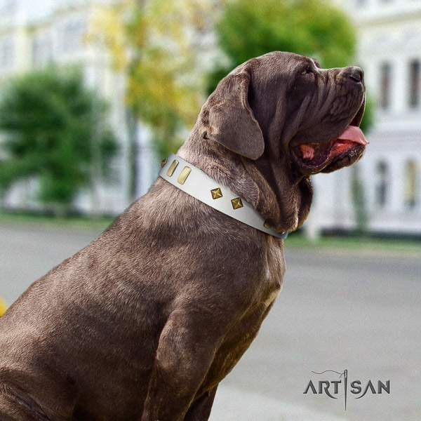 Mastino Neapoletano exceptional decorated natural leather dog collar for comfortable wearing