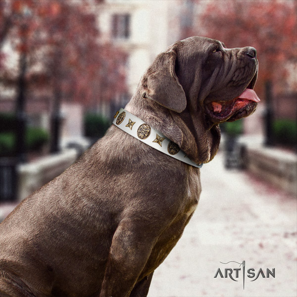 Mastino Neapoletano incredible studded full grain natural leather dog collar for comfy wearing