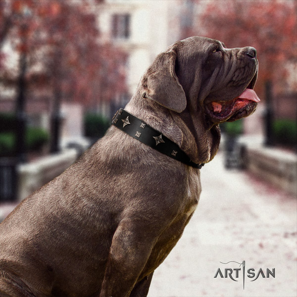 Mastino Neapoletano awesome decorated full grain natural leather dog collar for handy use