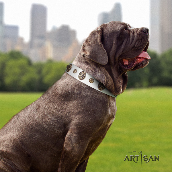 Mastino Neapoletano incredible adorned natural leather dog collar for comfortable wearing