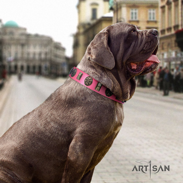 Mastino Neapoletano remarkable adorned full grain leather dog collar for daily walking