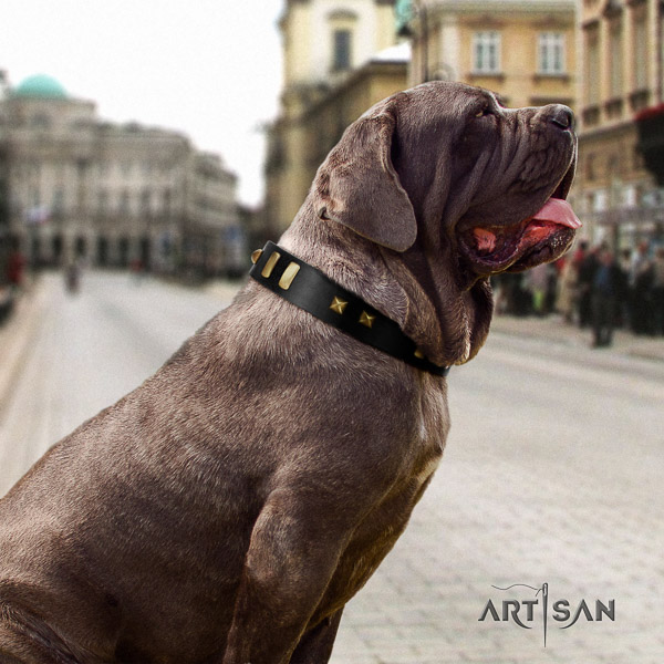 Mastino Neapoletano unusual embellished full grain genuine leather dog collar for comfy wearing