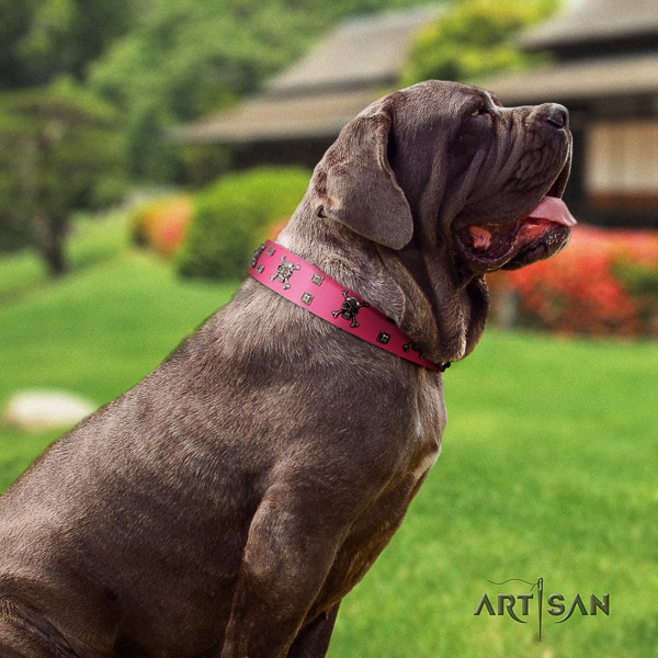 Mastino Neapoletano exquisite adorned full grain leather dog collar for comfy wearing