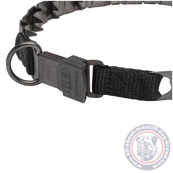 Neck tech pinch dog collar with secure buckle