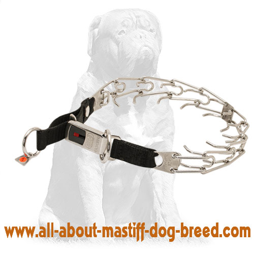 Comfy steel pinch dog collar
