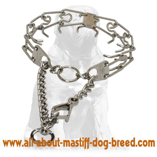Tear-resistant chrome plated pinch dog collar