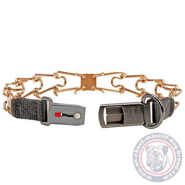 Dependable pinch dog collar