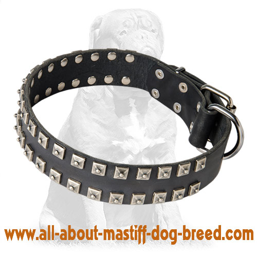 Durable leather dog collar with buckle and D-ring