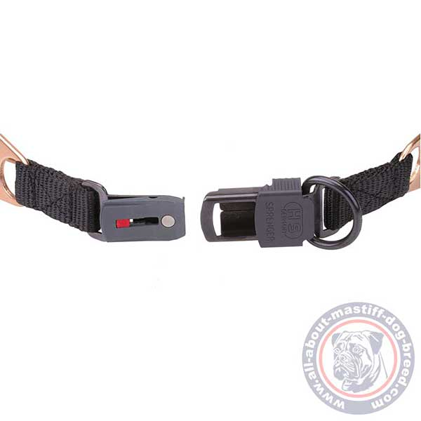 Curogan pinch dog collar quick in use