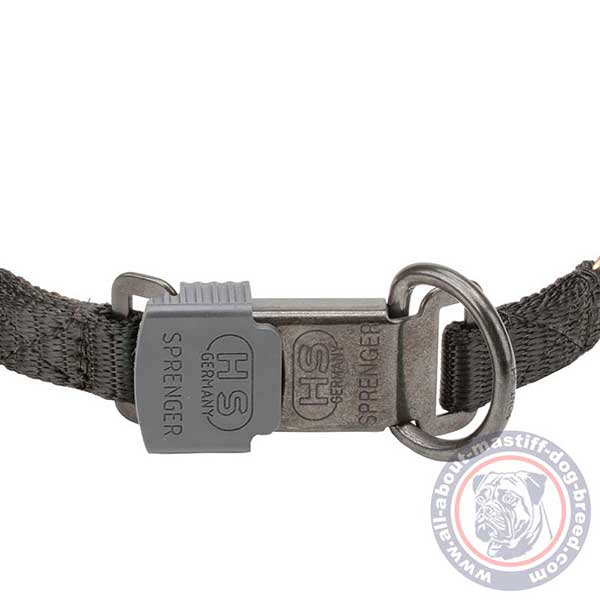 Reliable pinch dog collar with secure buckle