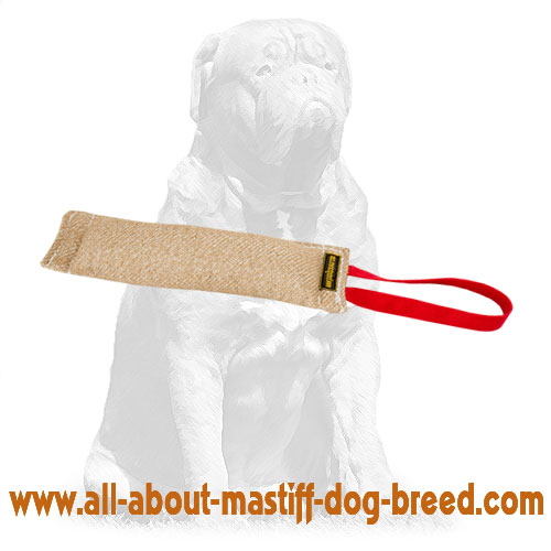 Easy to grab jute tug for bite training with handle