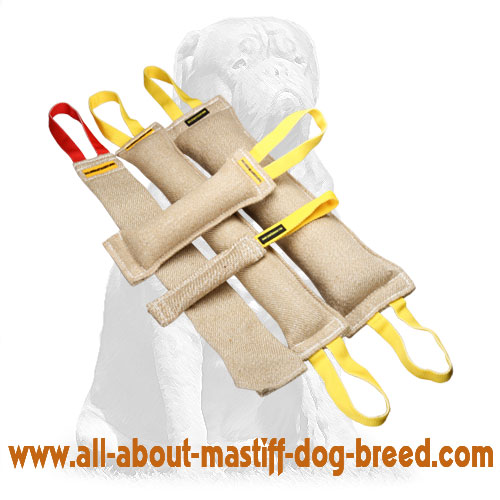 Easy to grab jute tugs for biting with handles