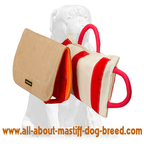 Durable dog pad supplied with removable leather cover