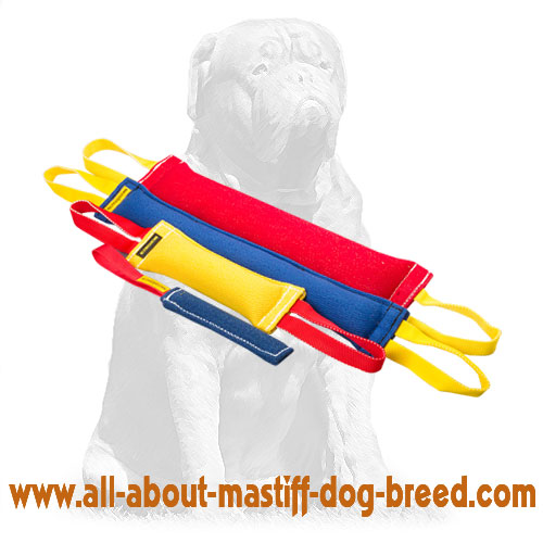 Tear-proof French Linen dog tugs for bite training