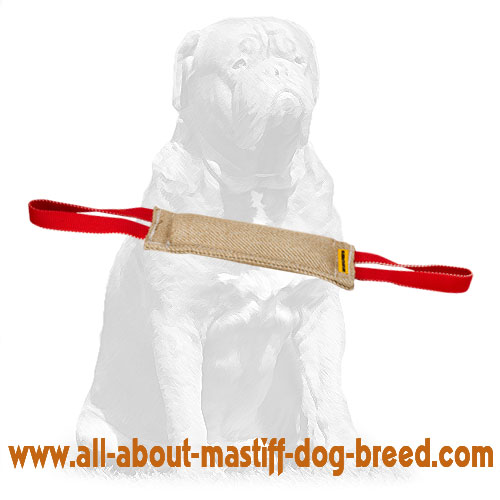 Reliable bite dog tug for heavy duty training with handles