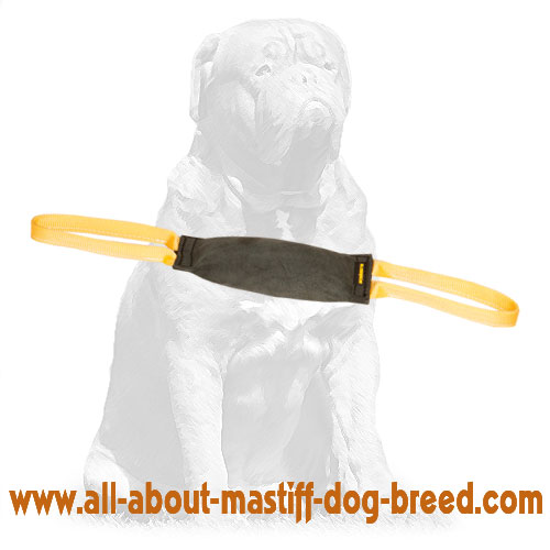 Durable leather training bite tug