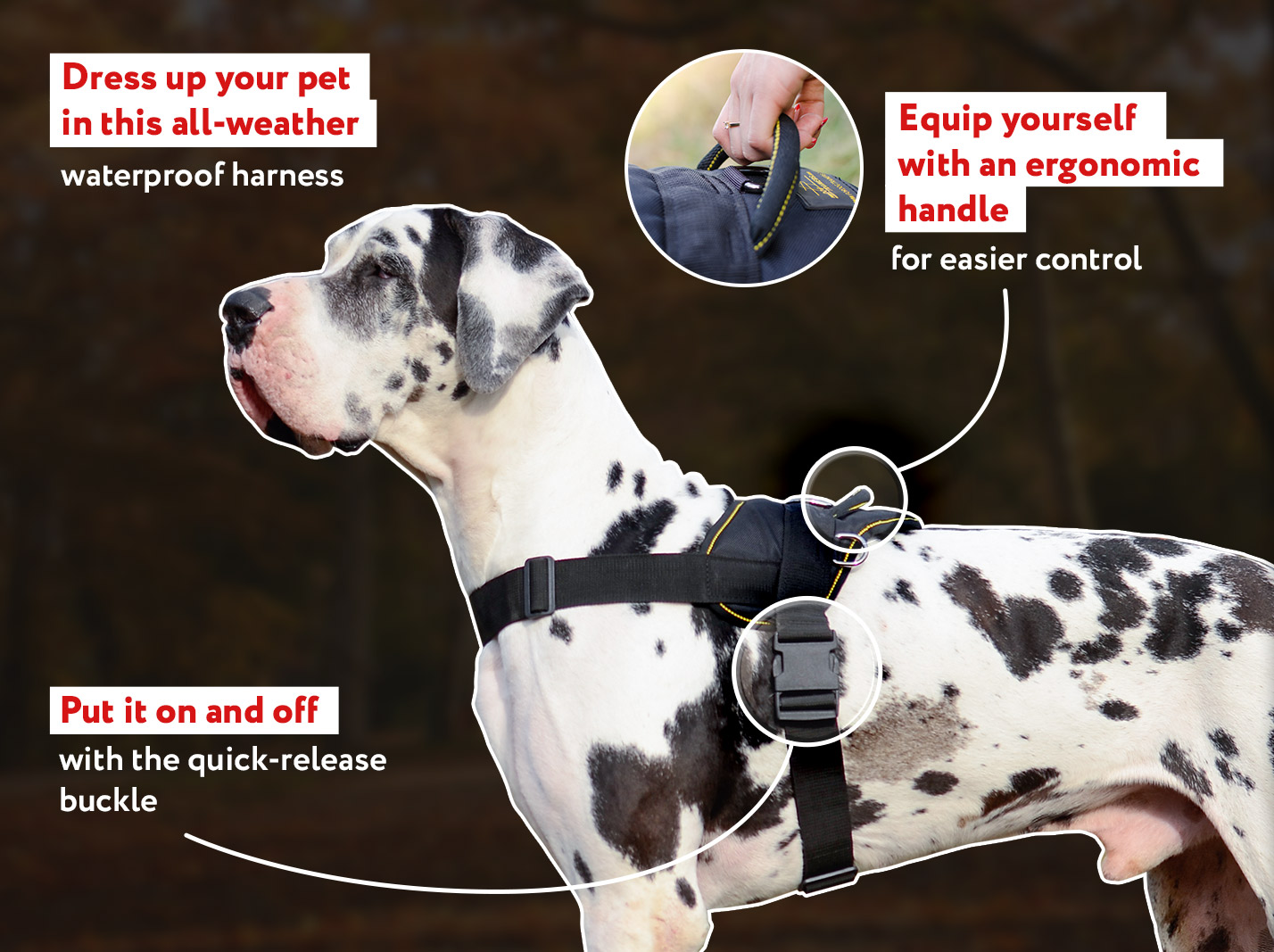 Extra Lightweight Nylon German Mastiff Harness for Tracking/Pulling