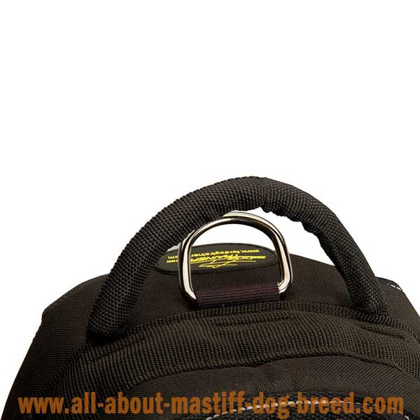 Feature-rich Boerboel Mastiff harness with stitcthed D-ring