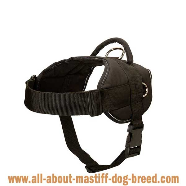 Lightweight Brazilian Mastiff harness manufactured of waterproof  nylon