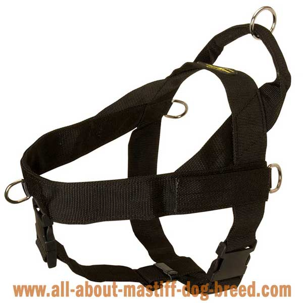 Nylon Dog Harness for Different Activities
