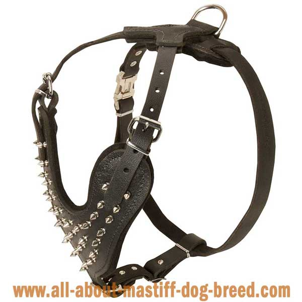 Convenient Leather English Mastiff Harness