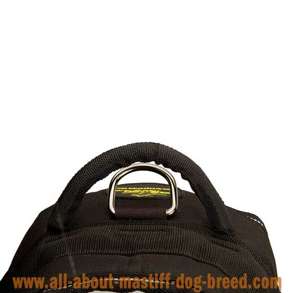 Lightweight nylon English Mastiff harness with strong  handle