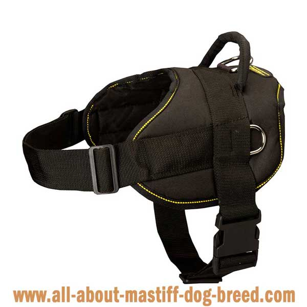Super lightweight nylon German Mastiff harness with quick  release buckle