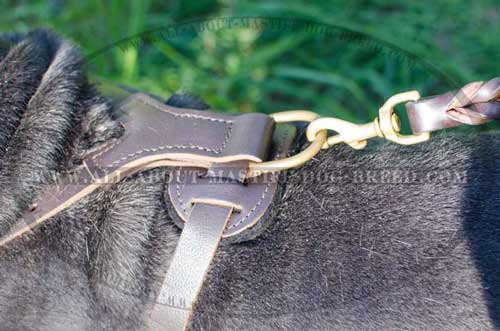 Leather dog harness with rust-proof fittings