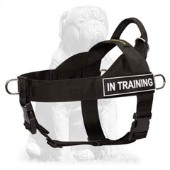 Mastiff Nylon Dog Harness for Training and Walking