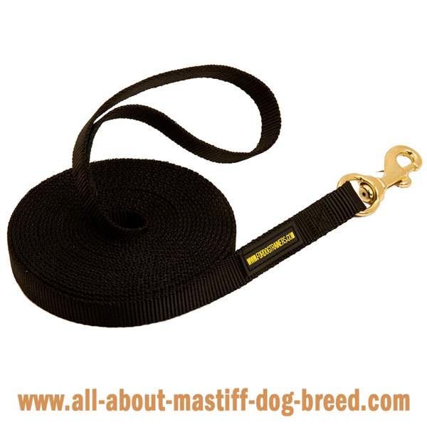 Nylon Mastiff leash with nylon handle and brass snap hook