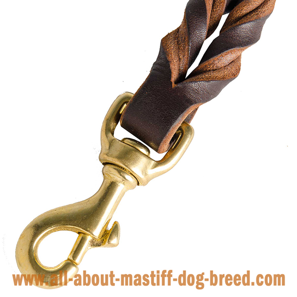 Superb leather leash with strong snap hook for Mastiff
