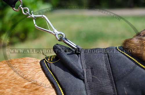Nylon dog harness with reliable fittings