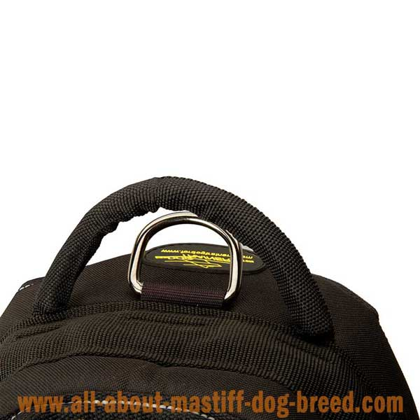 Easy adjustable Pyrenean Mastiff harness with D-ring for leash attachment