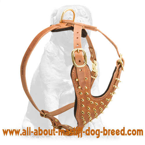 Softly padded tan leather dog harness