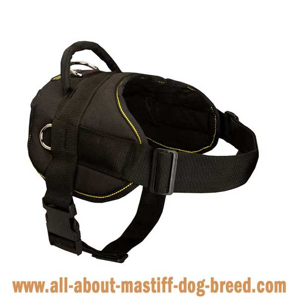 Superb nylon Tibetan Mastiff harness with wide straps