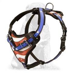 Agitation/attack Training Mastiff Harness