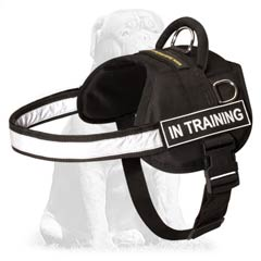 Lightweight Reflective Nylon K9 Mastiff Harness
