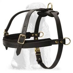 Tracking Leather Dog Harness for Mastiff Breed