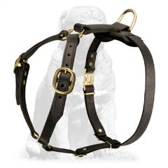 Mastiff Breed Leather Harness for Tracking Work